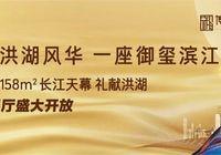 百年洪湖日新月异,为什么洪湖人民仍偏爱宏伟南路?