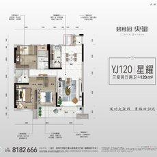 碧桂园·央玺YJ120户型图