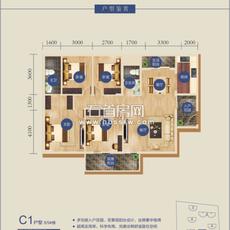 书香门第C1户型(8/9#楼)户型图