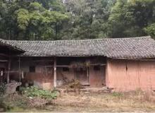 农村闲置房要拆了,这些人可能没有补助