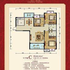 龍城怡景園(二期)5、7#樓 C戶型圖
