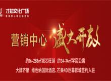 才知文化廣場營銷中心1月18日盛大開放