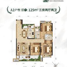 中建︱城发 荆江之星A2户型户型图