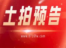 荆州高新区 3宗地块将于6月23日出售!