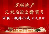 万联地产又一惠民力作——万联·枫林小城