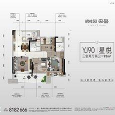 碧桂园·央玺YJ90户型图