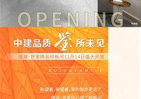 瑞湖·世家|精装样板间11月14日盛大开放