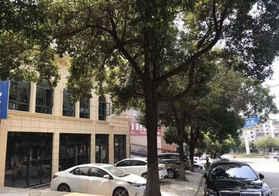 市区门面私房出售,四间二层带大平台内复试结构,全框架结构